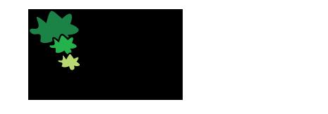 logo-7firs
