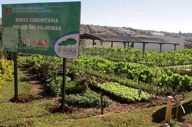 Fonte: Prefeitura de Maringá